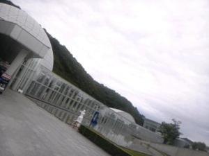 Sh3f46730001